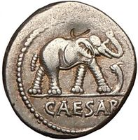 Julius Caesar Certified Authentic Ancient Silver and Bronze Coins for Sale with And without Portrait from Best Coin Dealer