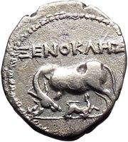 Cow and Baby Calf on Authentic Ancient Silver Greek Coins of Apollonia or Dyrrhachium
